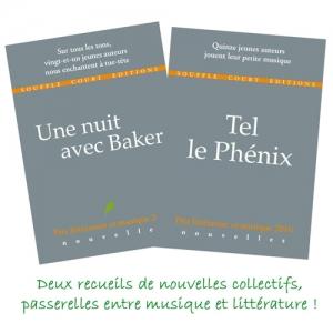 Héloïse De Ré, Prix littérature et musique