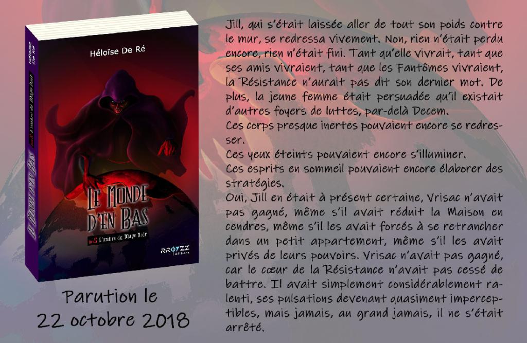 Héloïse De Ré, Le Monde d'en Bas, tome 5 : L'ombre du Mage Noir