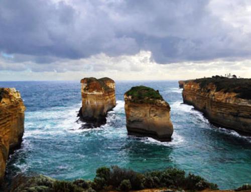 Great Ocean Road : plages, falaises et «rainforest»