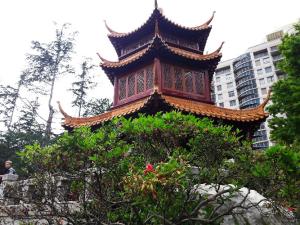 Héloïse De Ré, Sydney, Chinese Garden
